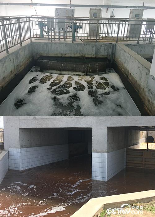 上图为晋州市第二污水处理厂出水口,水呈微绿色,根据环保部门实时监测显示达到一级A标准。下图为从滹沱河排污口经过预处理池净化后流入滹沱河的水,呈红褐色。(徐辉 摄)