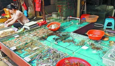 休渔一周以来,市场上的部分野生海捕鱼价格开始上浮