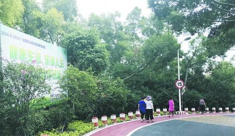 仙岳公园南侧步道提升改造后,变成了沥青路面,并铺设红色人行步道