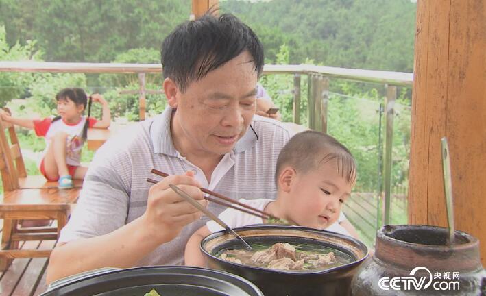 乡土:乡土中国美好生活 茶乡情缘 5月11日