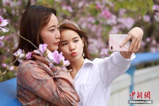 资料图:两位女士用手机进行自拍。(图文无关)