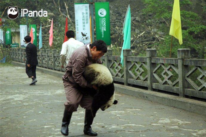 10年前的大震撼动的是熊猫之乡
