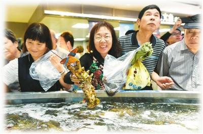 """2017年9月28日,""""盒马鲜生""""超市在杭州开门迎客,由于其主打的进口海鲜产品价格低于市场价格,吸引了大批市民前来购买海鲜。图为顾客在超市里选购波士顿龙虾。   龙 巍摄(人民视觉)"""
