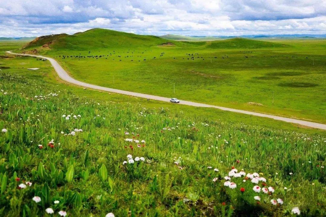 甘南川西最美风景线 最不该错过的自驾之旅