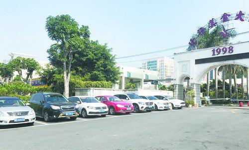 海天路上,车辆按照划好的停车线有序停放。