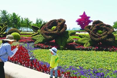 游人在青岛五四广场花坛前拍照。新华社发