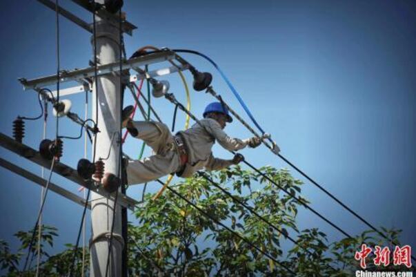 资料图:福州一电力作业人员冒高温爬上电杆作业。王东明 摄