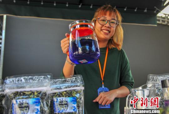 博览会现场展出产自台湾屏东的天然蓝色食用植物——蝶豆花。 于海洋 摄
