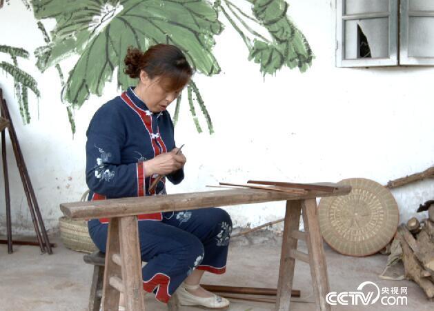 绿色时空:竹子扎堆 攀比身价 6月24日