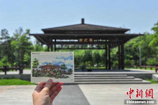 《遇见沈农》手绘校园景色明信片。