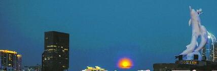 昨晚,圆月在演武大桥上初升,显得分外明亮。