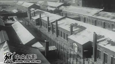 丝瓜成版人性视频app七三一部队旧址