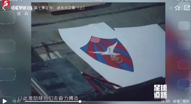 【足球道路】纪录片《足球道路》拾遗――冰岛的鸟儿
