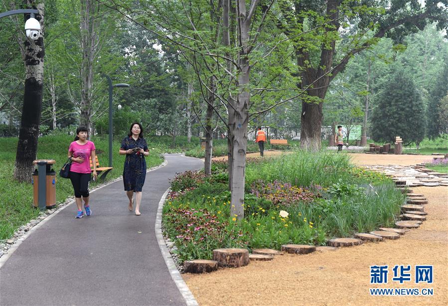 (社会)(3)北京东城区第一处城市森林公园建成开放图片