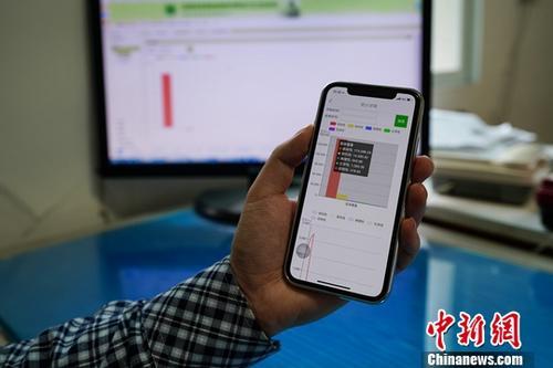 资料图:民众使用手机上网。中新社记者 贺俊怡 摄