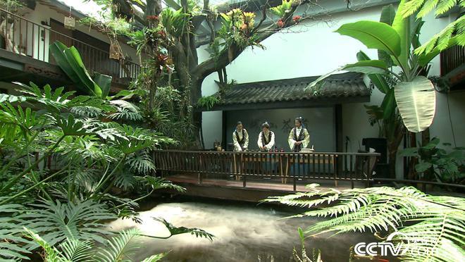 乡土:行走魅力茶乡 好山好水崂山茶 8月3日