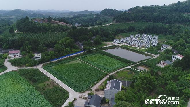 乡土:我们向往的乡村 魅力遂宁蓬溪篇 8月10日