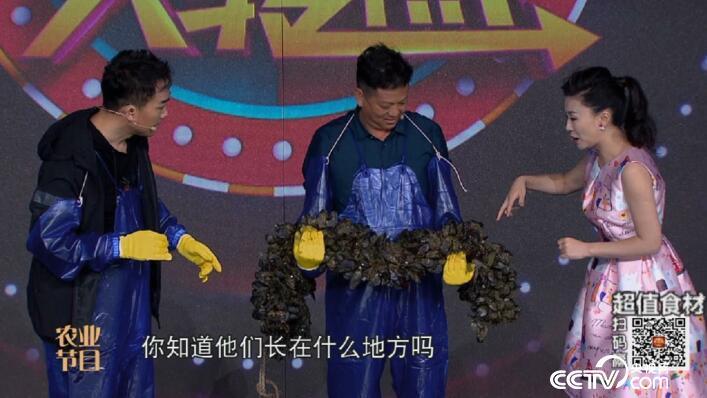 """食尚大转盘:翻江倒海出""""珍鲜"""" 8月5日"""