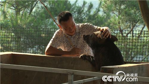 致富经:巧用桃园卖猪肉 一斤卖出88元 8月10日