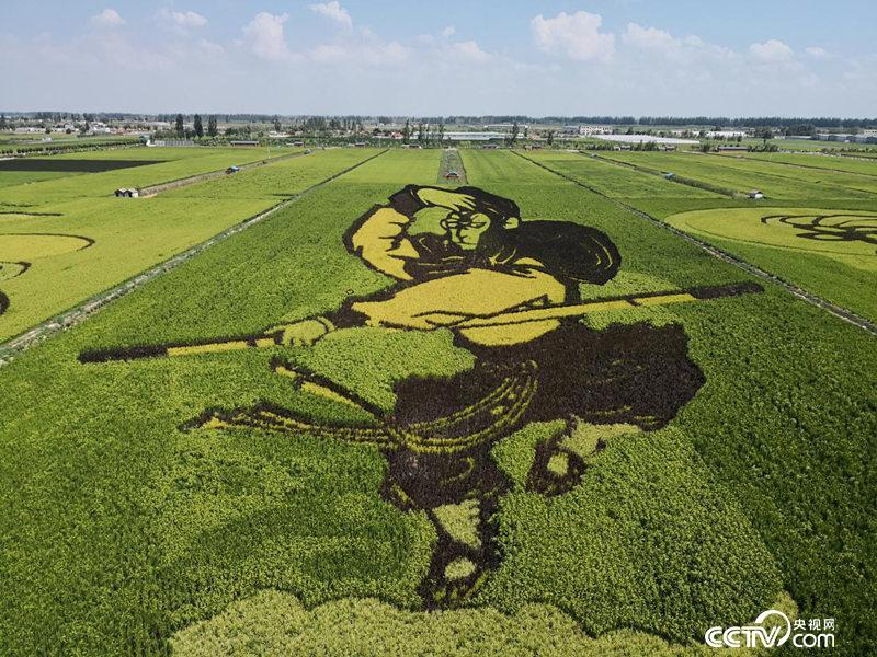 贺兰县常信乡四十里店村的稻田画。(高宇婷/摄)