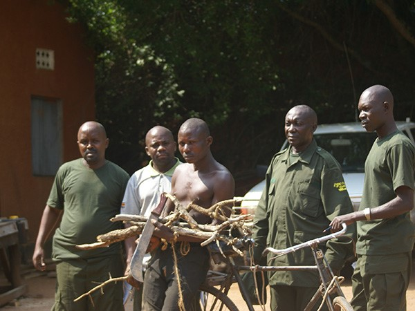 -Hunter arrested in Murchison Falls National Park, with a Machete used to kill wild animals and with firewood. (Photo/Timothy Sibasi)