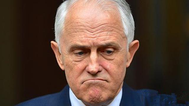 """澳大利亚总理特恩布尔宣布辞职 遭自己人""""背叛""""?"""
