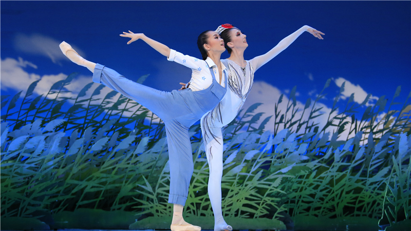 中国国家芭蕾舞团将于9月15日-16日上演极具民族特色的佳作《鹤魂》