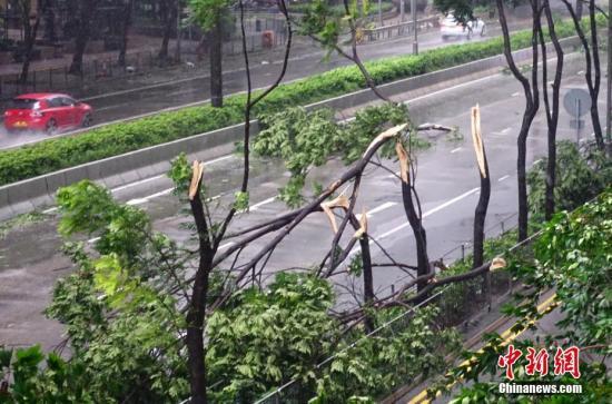 """9月16日,强台风""""山竹""""袭击香港,台风带来狂风暴雨。中新社记者 张炜 摄"""