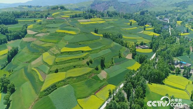 丰收中国 乡土颂丰年 收获篇 9月25日