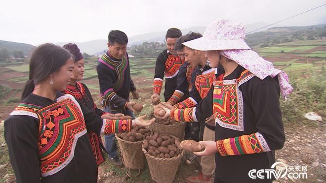 丰收中国 乡土颂丰年 守望篇 9月27日