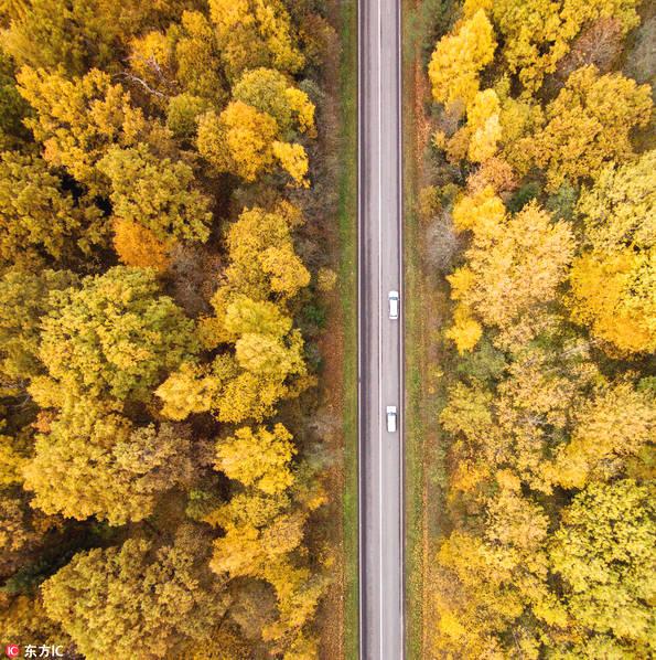 立陶宛摄影师Karolis Janulis使用无人机拍摄了一组祖国的秋日风光图片,从上帝的视角向我们展示了立陶宛在秋天的美丽蜕变。红色、绿色、金黄色……层林尽染的景色令人沉醉,美得不可言喻。