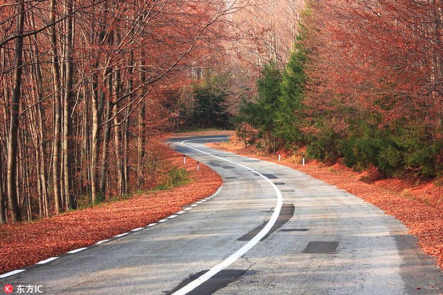 """罗马尼亚的川斯发格拉山公路。罗马尼亚的川斯发格拉山(Transfăgărășan)公路,亦称""""通天大道"""",在全国境内最高的山峰上曲折回旋。这条公路上有5座隧道、27座高架桥,以及831座小桥,连通着罗马尼亚历史悠久的特兰西瓦尼亚(Transylvania)和瓦拉几亚(Wallachia)地区。"""