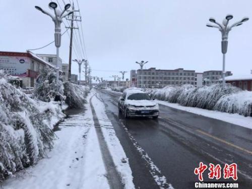 10月1日,国庆长假首日,青海海西州天峻县突降暴雪。史坤忠 摄