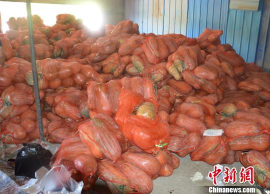 重庆警方破获运毒案20吨南瓜中藏毒2.8千克被查获