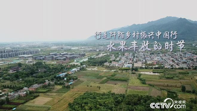 乡土:行走阡陌乡村振兴中国行 水果丰收的时节 11月1日