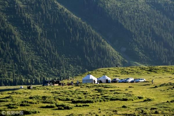 新疆伊犁,天山牧场