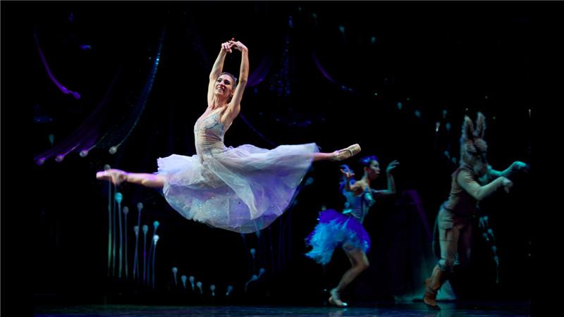 """昆士兰芭蕾舞团《仲夏夜之梦》既突出了""""仙界精灵""""的气质,又将剧中幽默诙谐的喜剧成分展现得淋漓尽致"""