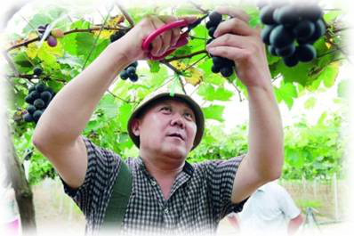 中国记者节 | 致敬真实的力量