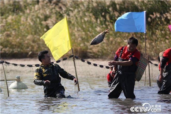 捕鱼现场好欢乐