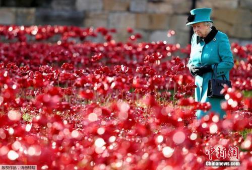 一战结束百年战争殇思未消 国际社会吁以史为鉴