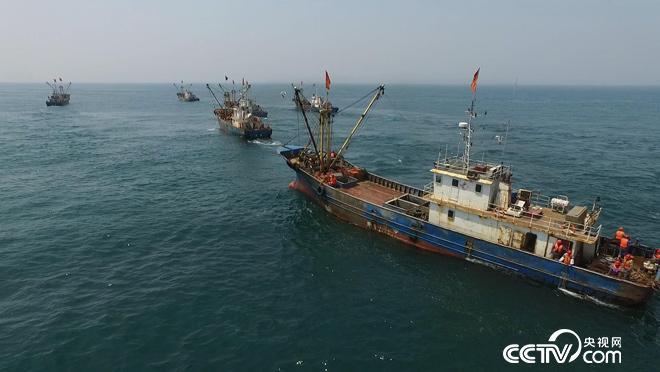 乡土:海洋岛的开渔节(下) 11月16日