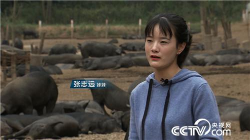 [致富经]90后姐妹花怪招养黑猪 一头多卖2000多元 20181113