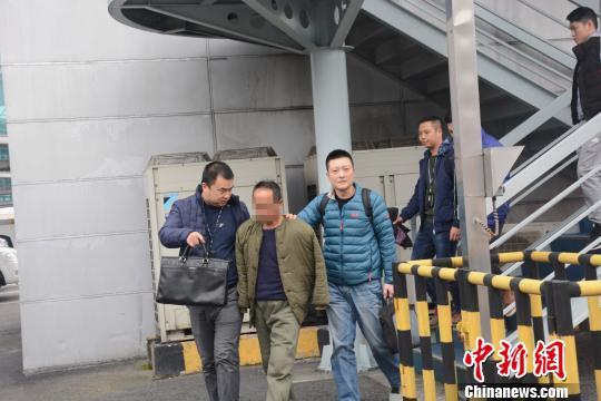 图为警方将犯罪嫌疑人高某押解回重庆。 警方供图 摄