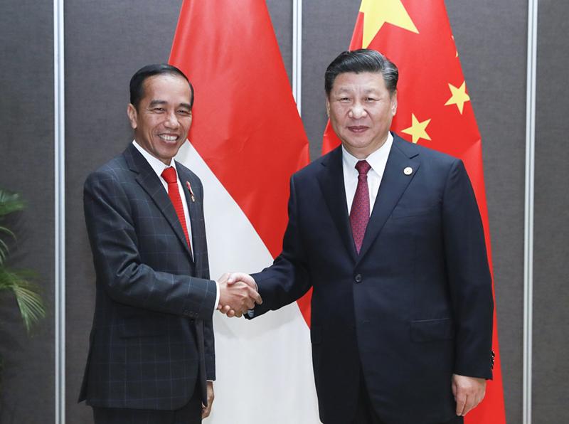 11月17日,国家主席习近平在莫尔兹比港会见印度尼西亚总统佐科。新华社记者 庞兴雷 摄