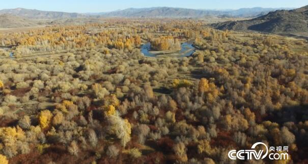 美丽中国乡村行:乡村振兴看中国--清河 这里的石头真疯狂 11月21日