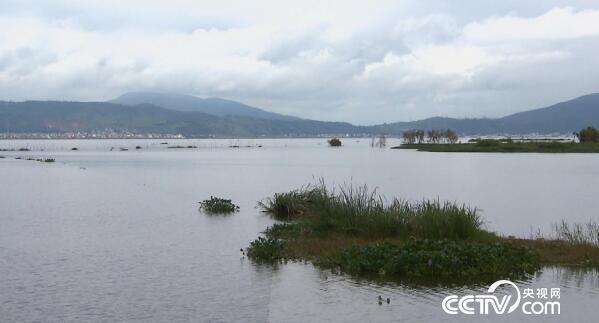美丽中国乡村行:乡村振兴看中国--丰收惊喜游通海 11月22日