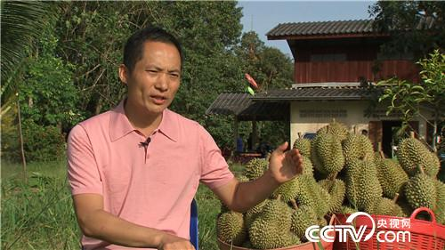 [致富经]湄公河 中国商人在行动 20181130