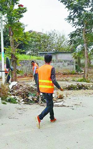 ▲湖里区有关部门及殿前街道有关工作人员对中埔西路进行清理整治。