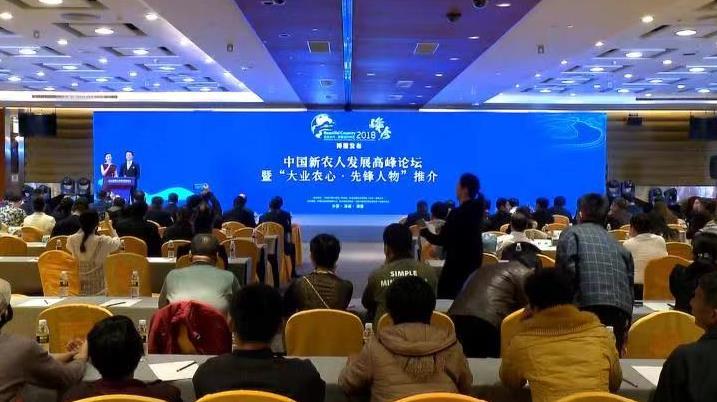 """""""中国新农人发展高峰论坛""""现场(李文亮/摄)"""