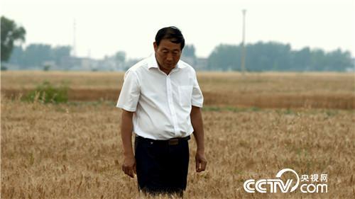 【改革开放40年·共话三农】土地政策变革给农民带来实实在在收益